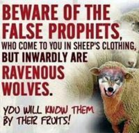 beware-false-prophets-wolf-in-sheep-clothes