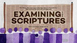 Bereans scripture